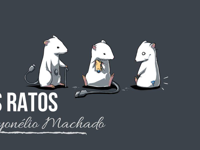 os ratos-01